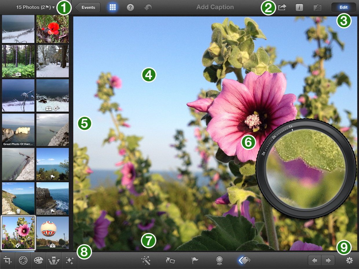 iPhoto iPad Interface