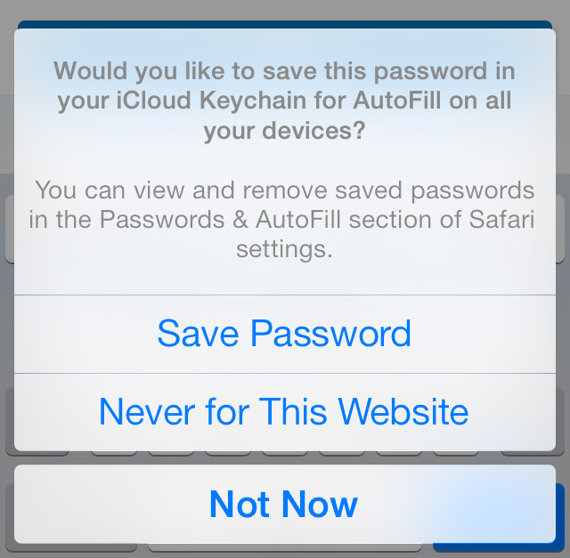 Save password in iCloud Keychain