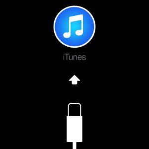 iTunes Restore screen